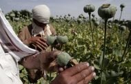 Top 5 heroin producing countries in the world